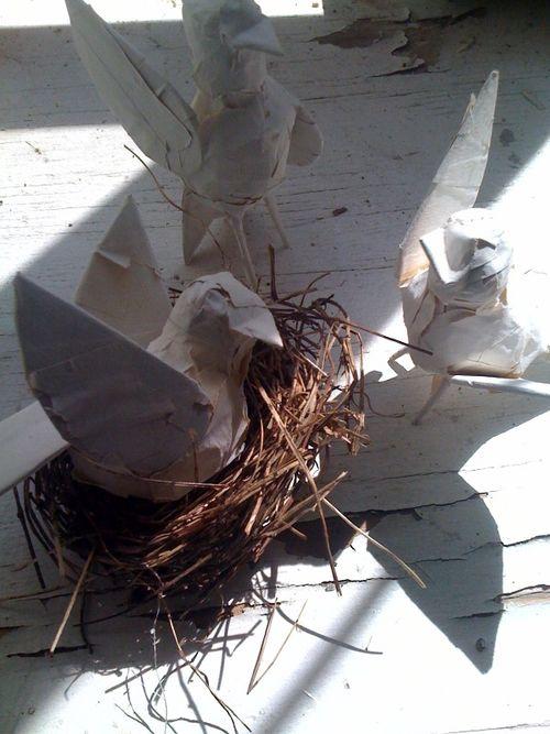 Adam's birds