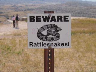 DL_rattlesnake sign